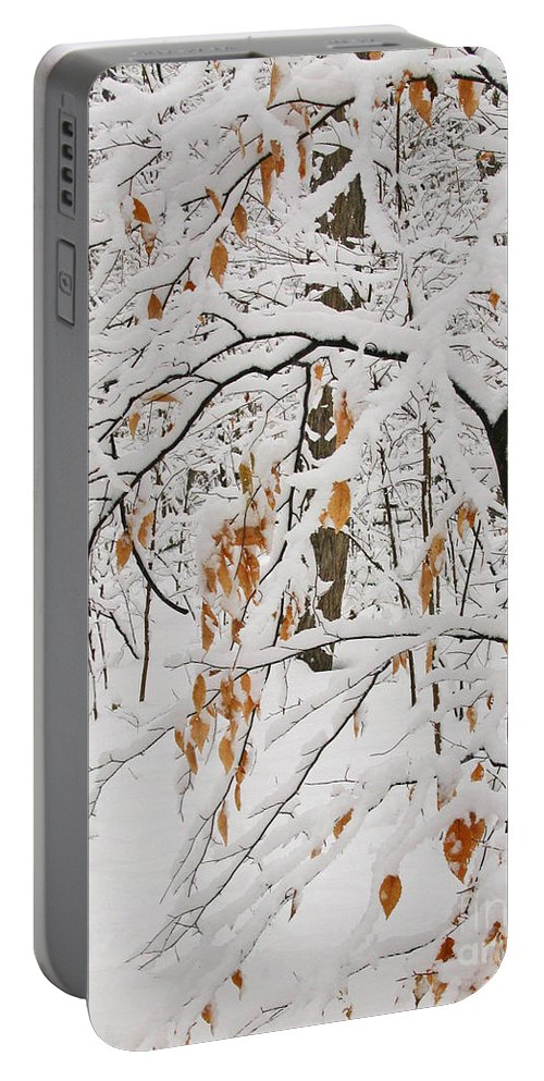 Winter Portable Battery Charger featuring the photograph Winter Branches by Ann Horn