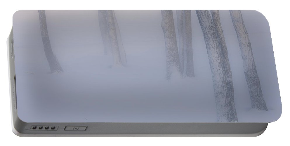 Hokkaido Portable Battery Charger featuring the photograph Winter Fog by John Shaw