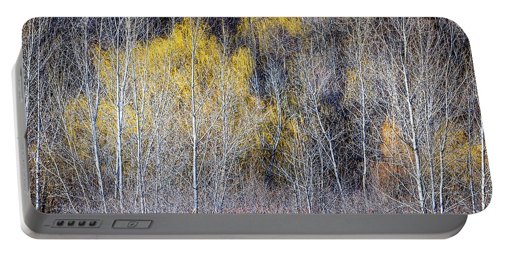 Trees Portable Battery Charger featuring the photograph Winter Forest Landscape With Bare Trees by Elena Elisseeva