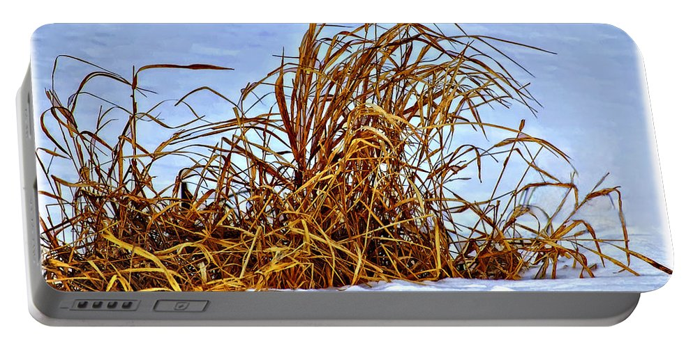 Winter Portable Battery Charger featuring the photograph Winter Grasses II by Steve Harrington
