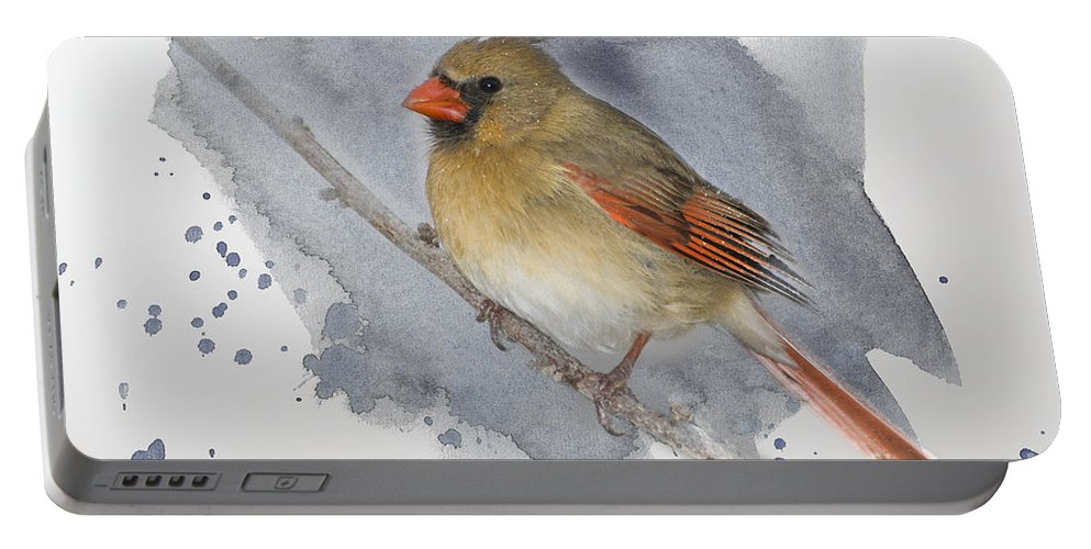 Cardinal Portable Battery Charger featuring the photograph Winter Northern Cardinal by Betty LaRue
