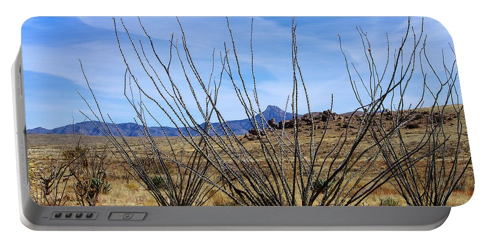 Photography Portable Battery Charger featuring the photograph Winter Ocotillo Garden by Vicki Pelham