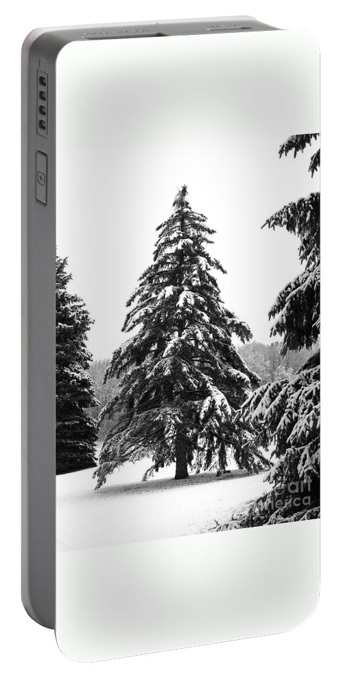 Winter Portable Battery Charger featuring the photograph Winter Pines by Ann Horn