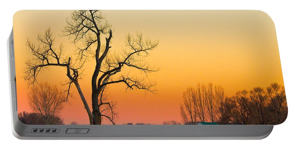 Tree Portable Battery Charger featuring the photograph Winter Season Country Sunset by James BO Insogna