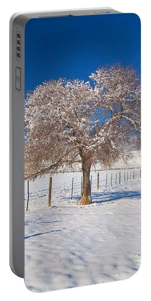 Tree Portable Battery Charger featuring the photograph Winter Season On The Plains Portrait by James BO Insogna