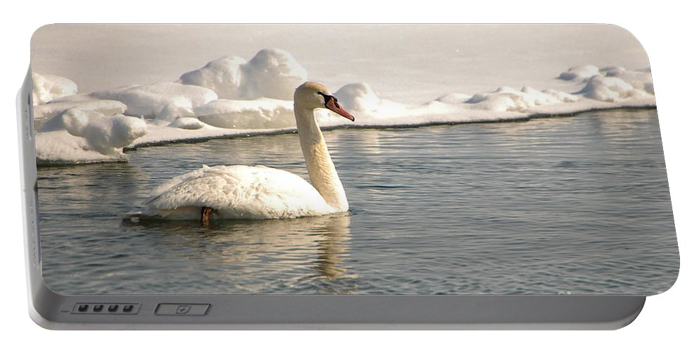 Swan Portable Battery Charger featuring the photograph Winter Swan by Grace Grogan