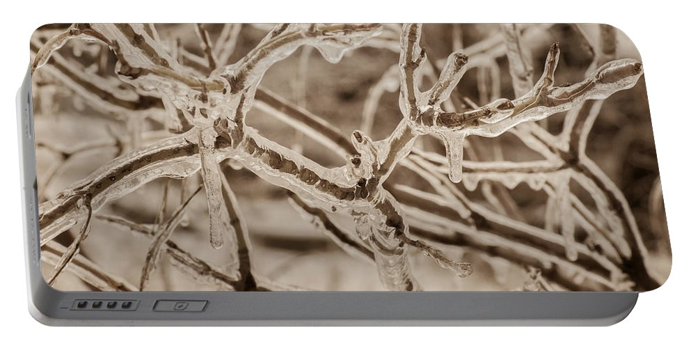Bill Pevlor Portable Battery Charger featuring the photograph Winter Tangle by Bill Pevlor