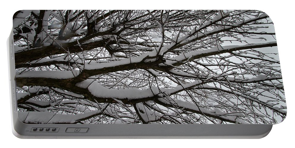 Snow Portable Battery Charger featuring the photograph Winter Tree 3 by William Norton