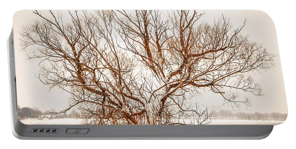 Winter Portable Battery Charger featuring the photograph Winter Tree by Grace Grogan