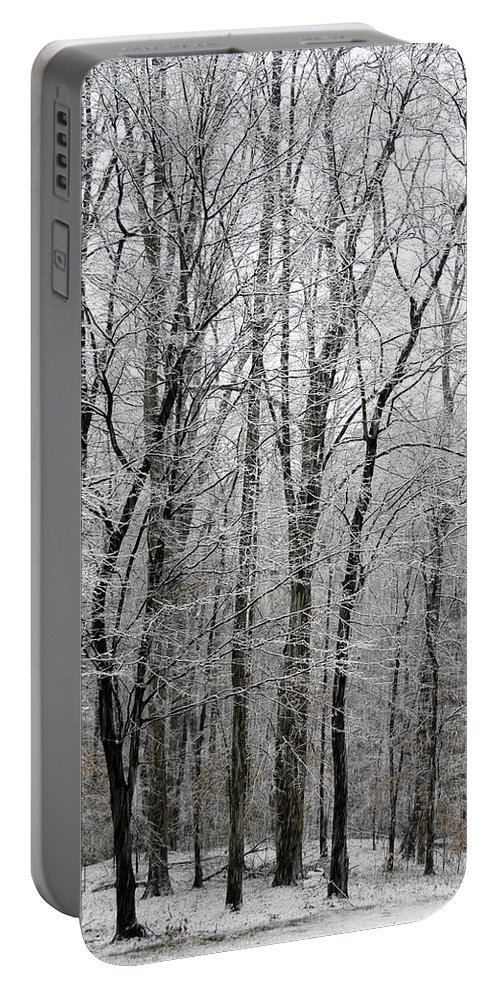 Tree Portable Battery Charger featuring the photograph Winter Trees by Guy Shultz