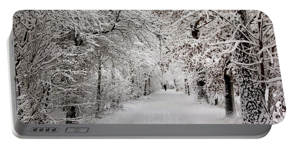 Nature Portable Battery Charger featuring the photograph Winter Walk In Fairytale by Annie Snel