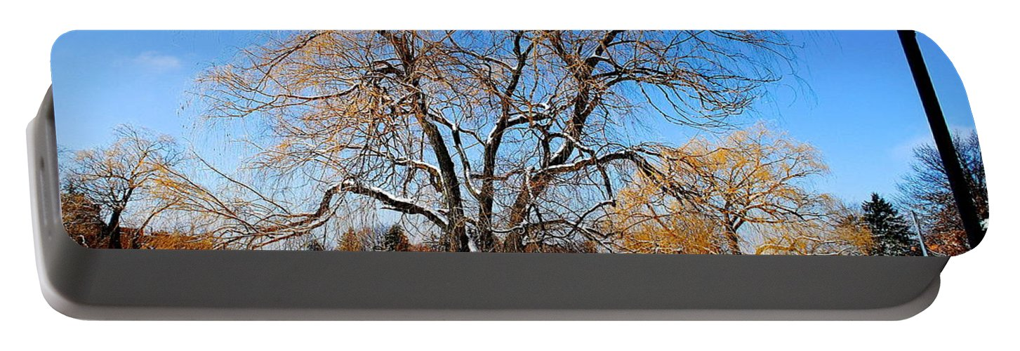 Willow Portable Battery Charger featuring the photograph Winter Willow by Frozen in Time Fine Art Photography