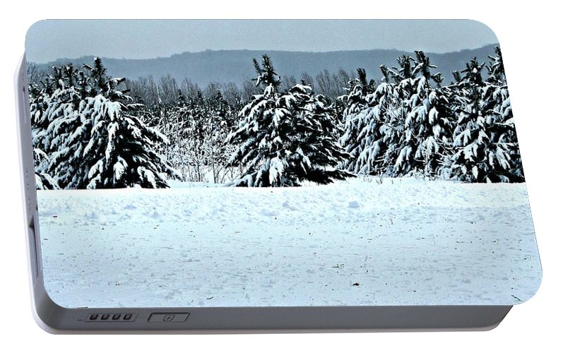 Winter Portable Battery Charger featuring the painting Winter's Love by Robert Nacke