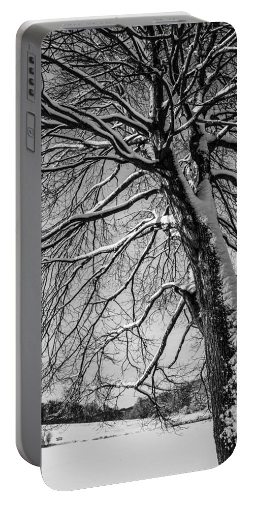 Winters Tree Portable Battery Charger featuring the photograph Winters Tree by Karol Livote