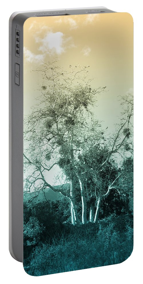 Landscape Portable Battery Charger featuring the photograph Winter's Tree by Kathleen Grace