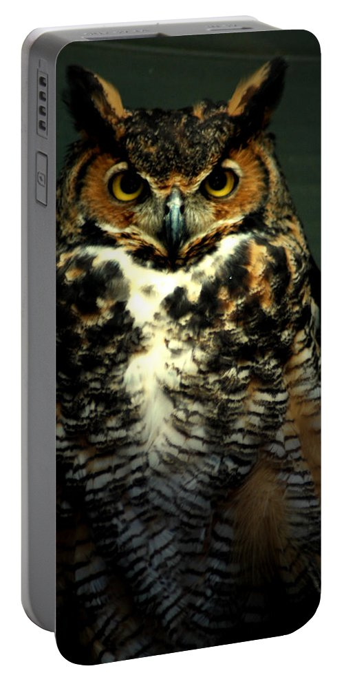 Owl Portable Battery Charger featuring the photograph Wise by David Weeks
