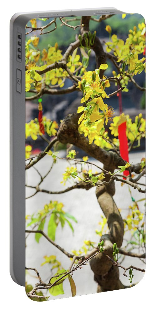 Photography Portable Battery Charger featuring the photograph Wishing Tree At The Tomb Of Emperor by Panoramic Images
