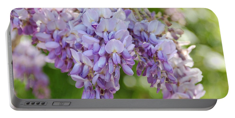 Flower Portable Battery Charger featuring the photograph Wisteria by Kathy McCabe