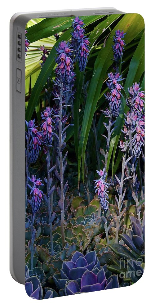 Forest Portable Battery Charger featuring the photograph Wondrous Little Forest by Byron Varvarigos