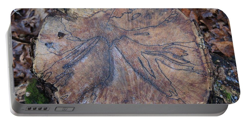Trees Portable Battery Charger featuring the photograph Wood Design by Jeffery L Bowers