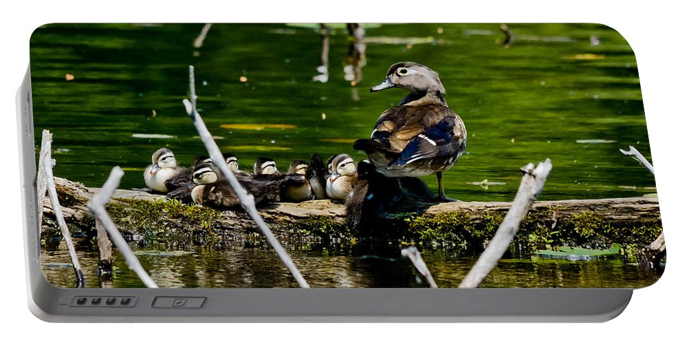 Wood Ducks Portable Battery Charger featuring the photograph Wood Duck Family by Cheryl Baxter