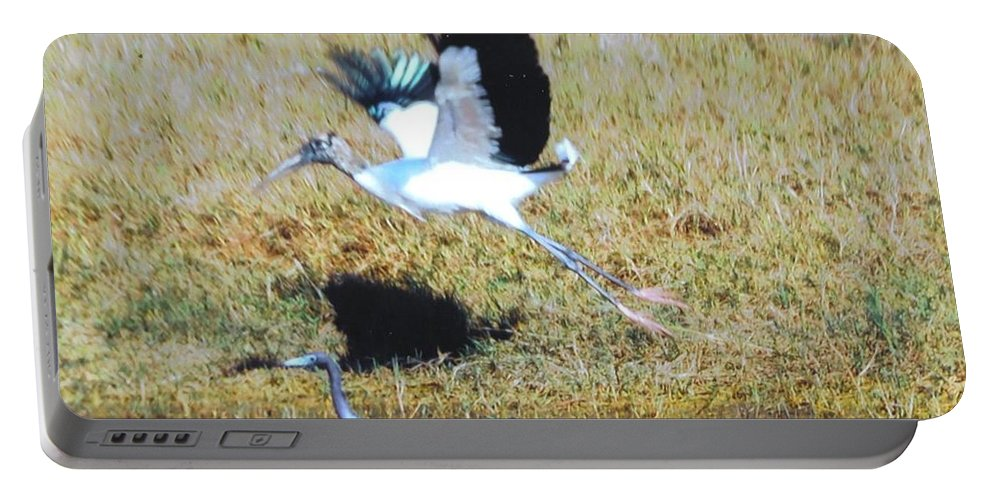 Taking Flight Portable Battery Charger featuring the photograph Wood Stork And Blue Heron by Robert Floyd