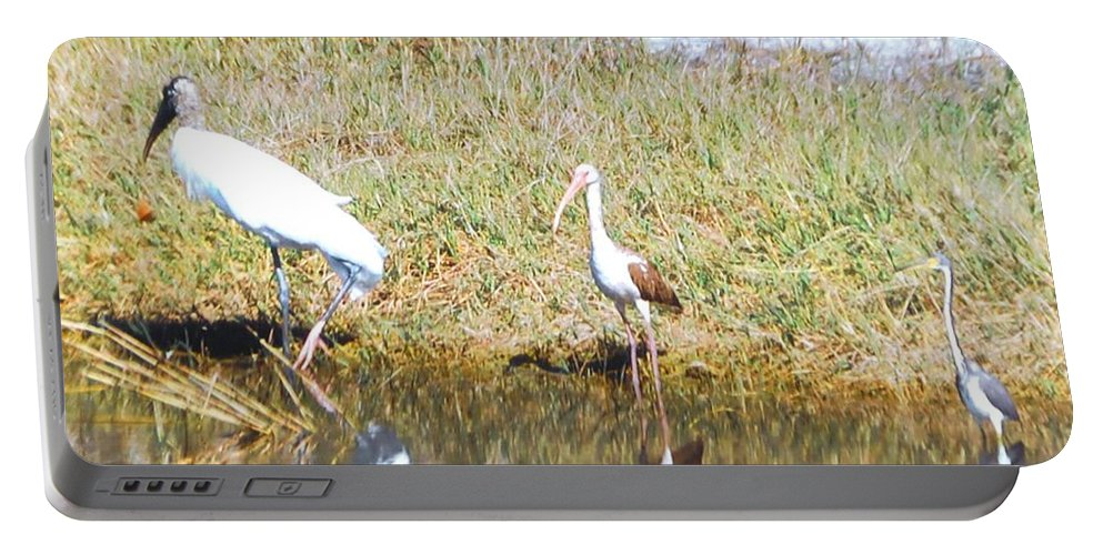 North Ft.myers Portable Battery Charger featuring the photograph Wood Stork And Ibis And Heron by Robert Floyd