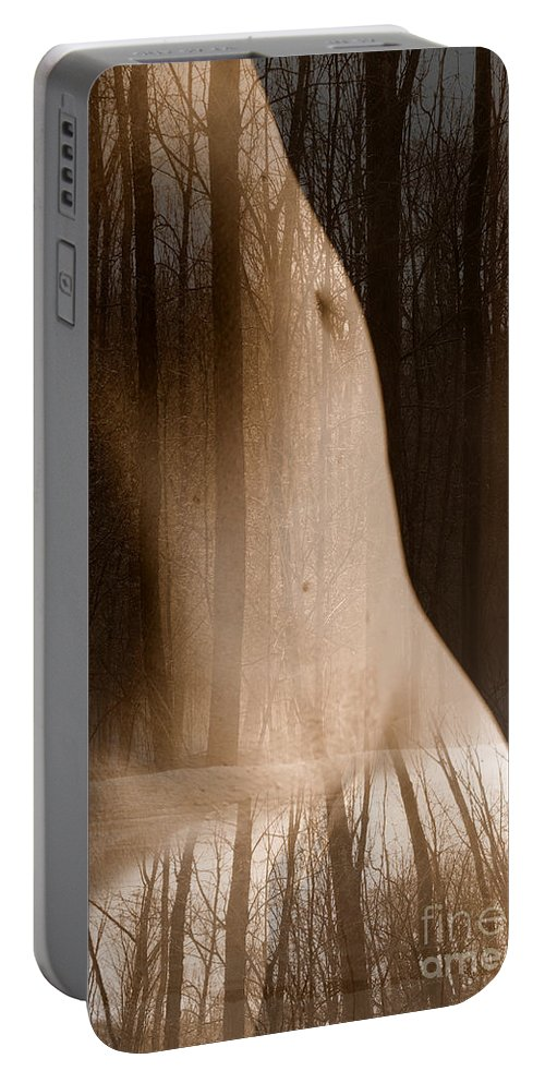 Nudes Portable Battery Charger featuring the photograph Wooded Belly by Trish Hale