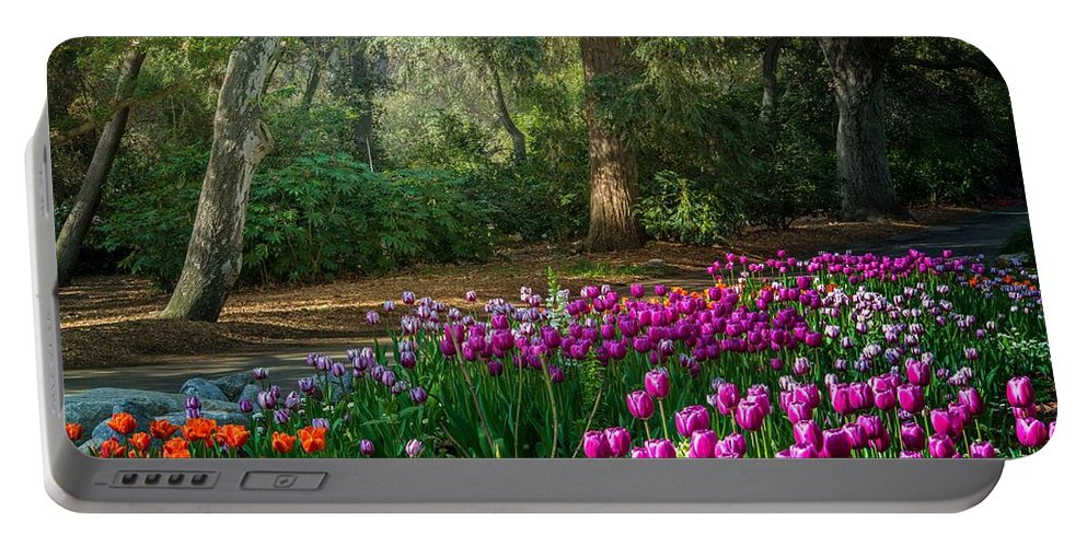 Tulip Portable Battery Charger featuring the photograph Wooded Bliss by Lynn Bauer