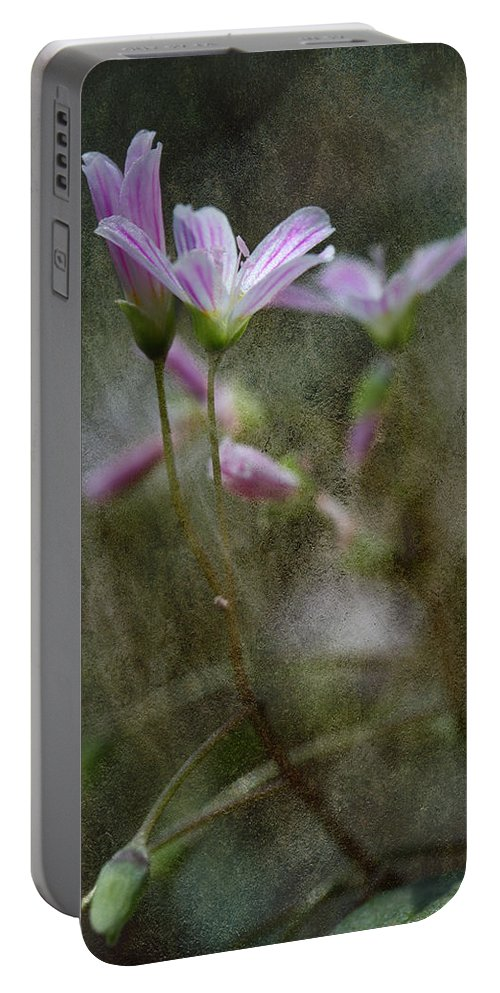 Pink Wildflower Portable Battery Charger featuring the photograph Woodland Delight 4 by Michael Eingle