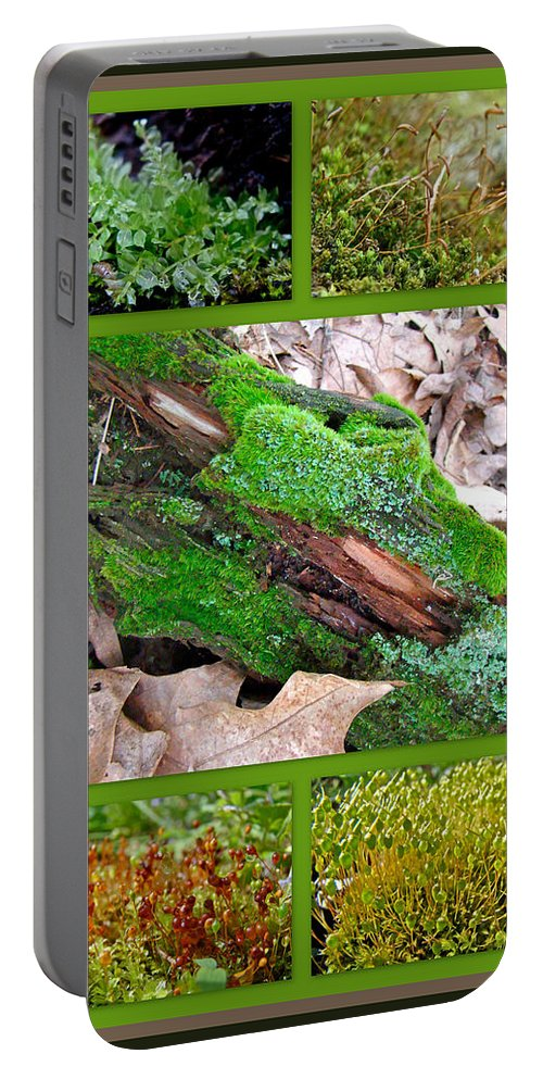 Moss Portable Battery Charger featuring the photograph Woodland Mosses by Mother Nature