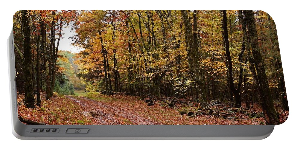 Landscape Portable Battery Charger featuring the photograph Woods walk by Lisa Kane