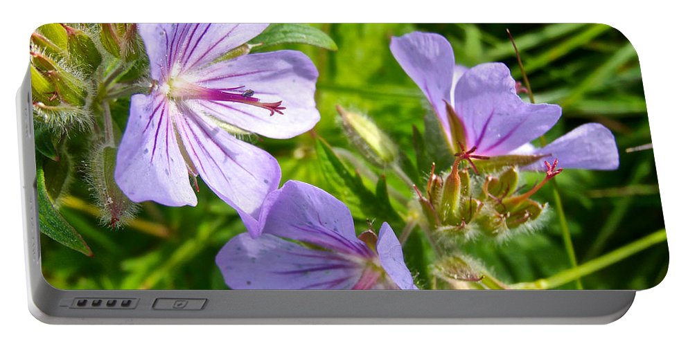 Wooly Geranium Portable Battery Charger featuring the photograph Wooly Geranium In Katmai National Preserve-ak by Ruth Hager