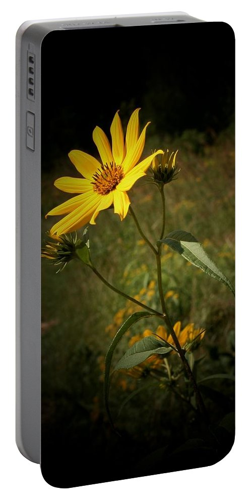 Floral Portable Battery Charger featuring the photograph Worshipping The Sun by Susan McMenamin