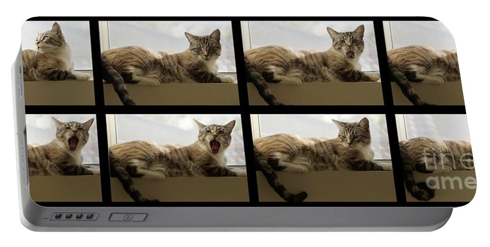 Cat Portable Battery Charger featuring the photograph Yawn by Peggy Hughes
