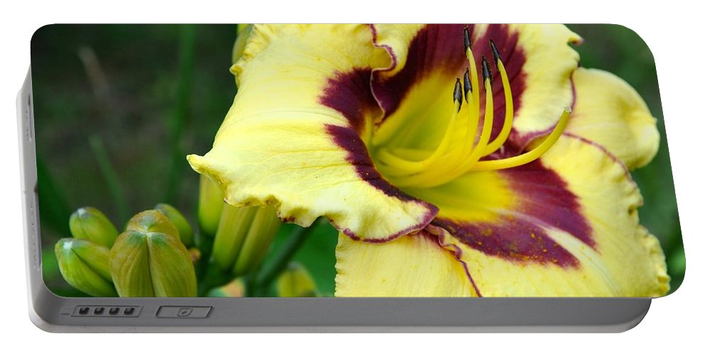 Lily Portable Battery Charger featuring the photograph Yawning Lily by Christina McKinney