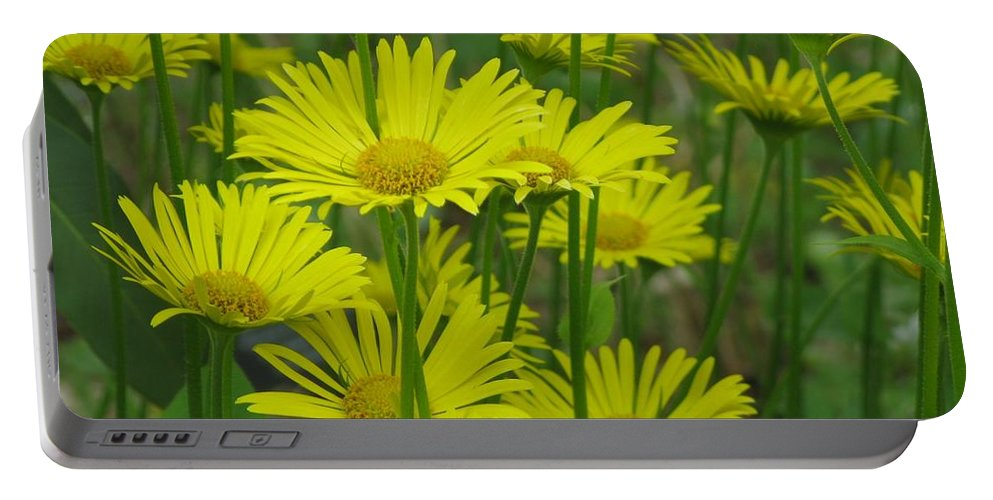 Daisy Portable Battery Charger featuring the photograph Yellow And Green by Lena Photo Art