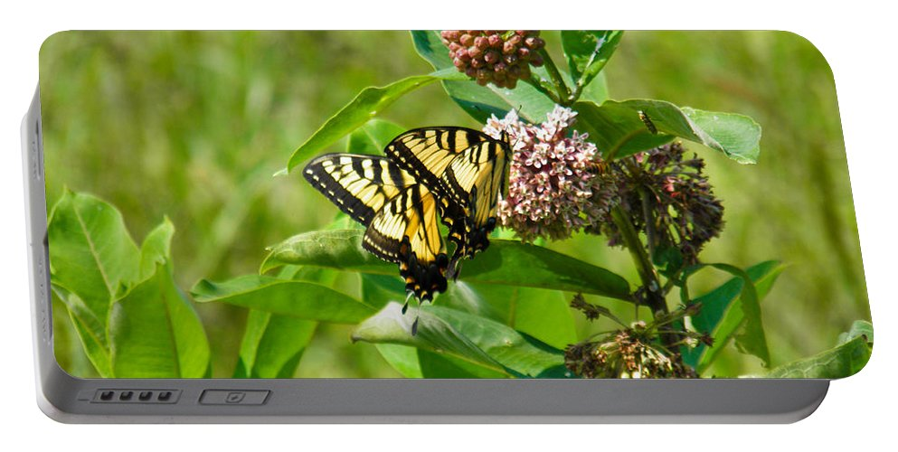 Yellow Portable Battery Charger featuring the photograph Yellow Butterflies by Nick Kirby