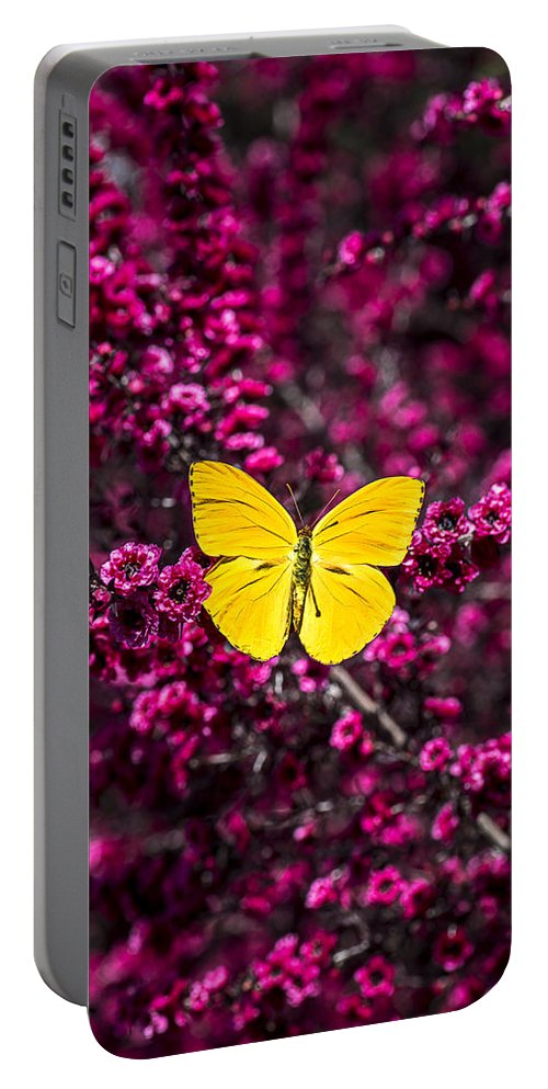 Evergreen Portable Battery Charger featuring the photograph Yellow Butterfly On Red Flowering Bush by Garry Gay