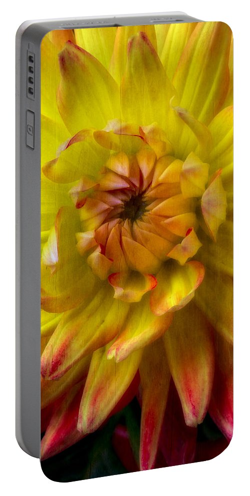 Yellow Dahlia Portable Battery Charger featuring the photograph Yellow Dahlia by Garry Gay