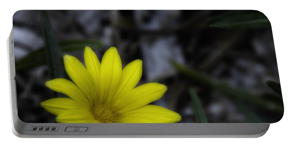 Yellow Flower Portable Battery Charger featuring the photograph Yellow Flower Soft Focus by Ron White