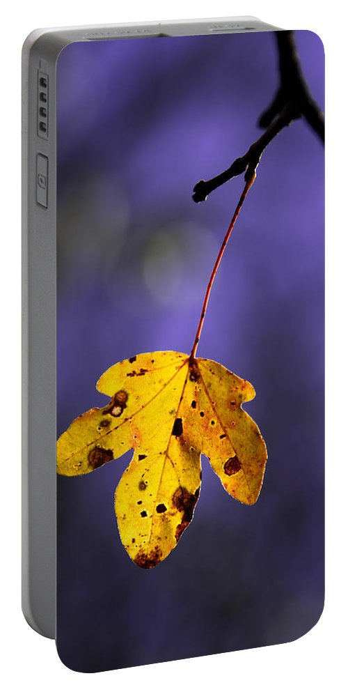 Leaves Portable Battery Charger featuring the photograph Yellow Leaf by Mikel Martinez de Osaba