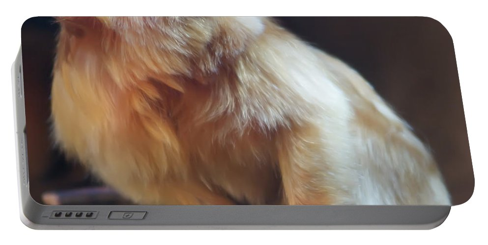 Animal Portable Battery Charger featuring the photograph Yellow Monkey by Alex Grichenko
