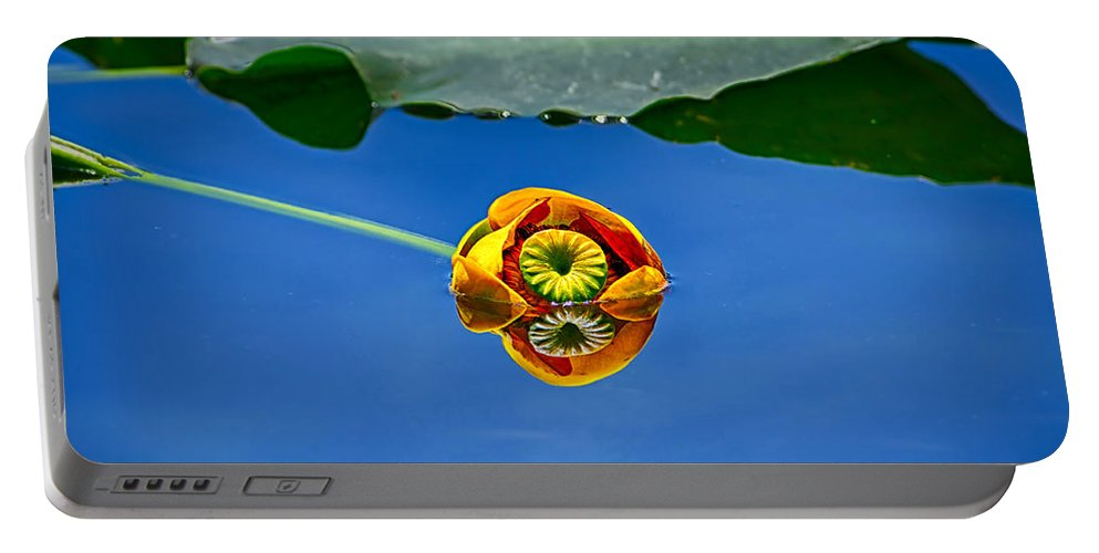 Lily Portable Battery Charger featuring the photograph Yellow Pond Lily by Greg Norrell