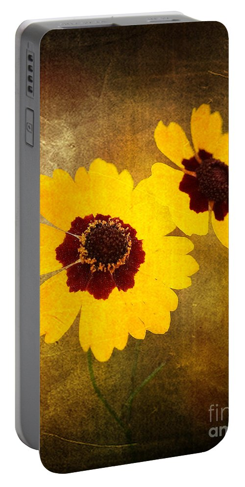 Flower Portable Battery Charger featuring the photograph Yellow Prize by Scott Pellegrin