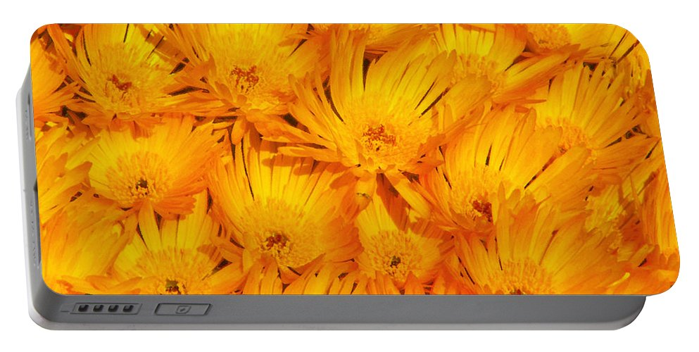 Argyranthemum Portable Battery Charger featuring the photograph Yellow Radiance by Stephen Edwards