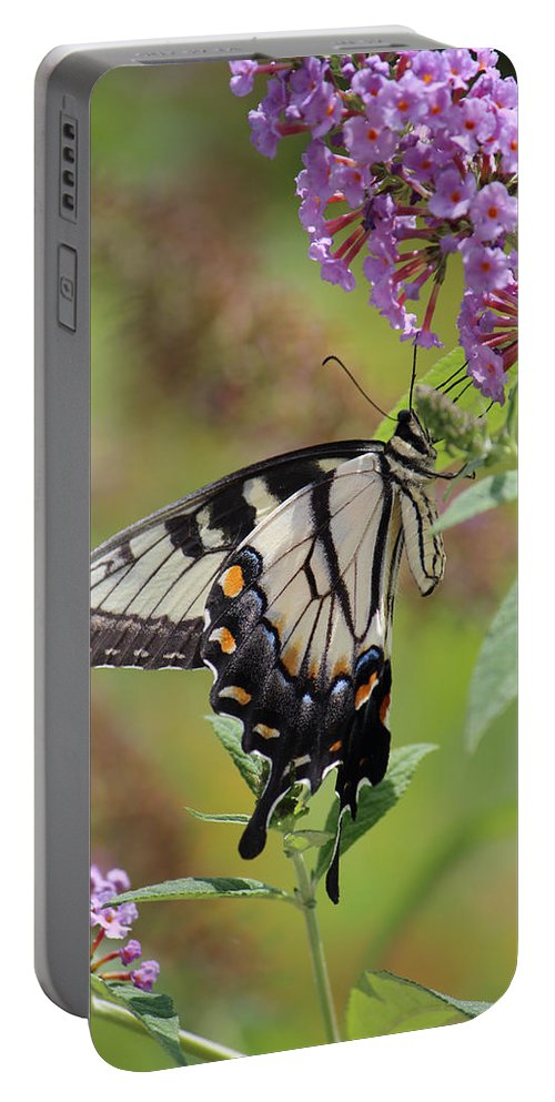 Photography Portable Battery Charger featuring the photograph Yellow Swallowtail Butterfly Taking A Drink by Jackie Farnsworth