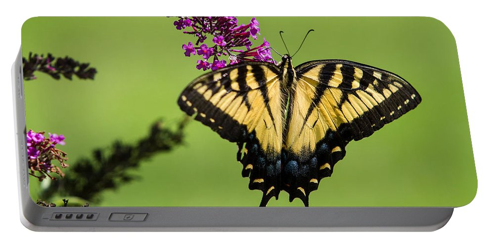 Yellow Swallowtail Portable Battery Charger featuring the photograph Yellow Swallowtail by Eleanor Abramson