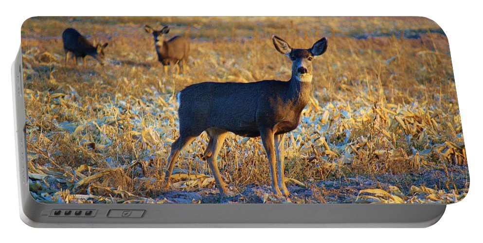 Roena King Portable Battery Charger featuring the photograph You Have Her Attention by Roena King