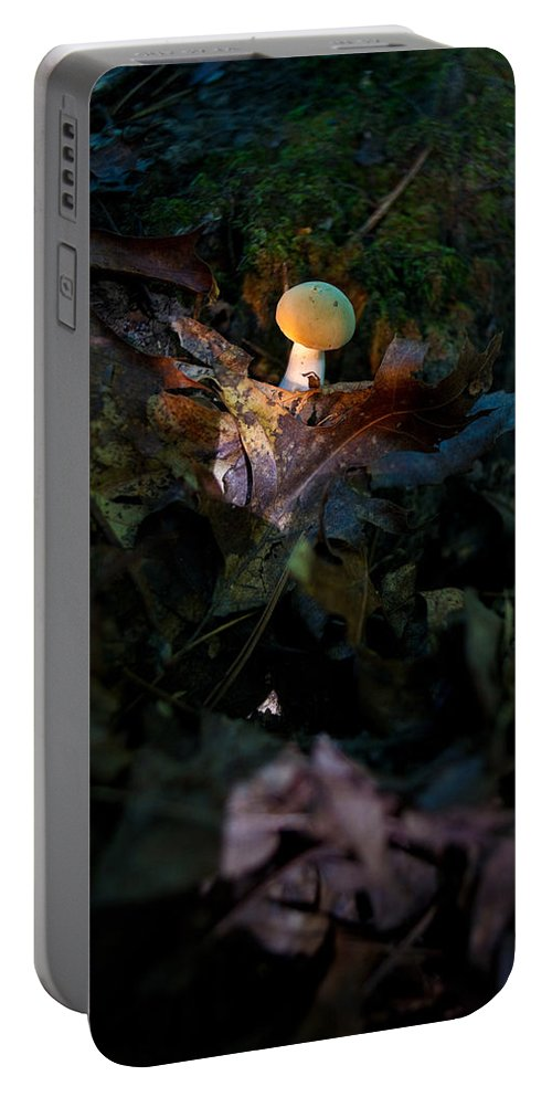 Cove Portable Battery Charger featuring the photograph Young Lonely Mushroom by Douglas Barnett